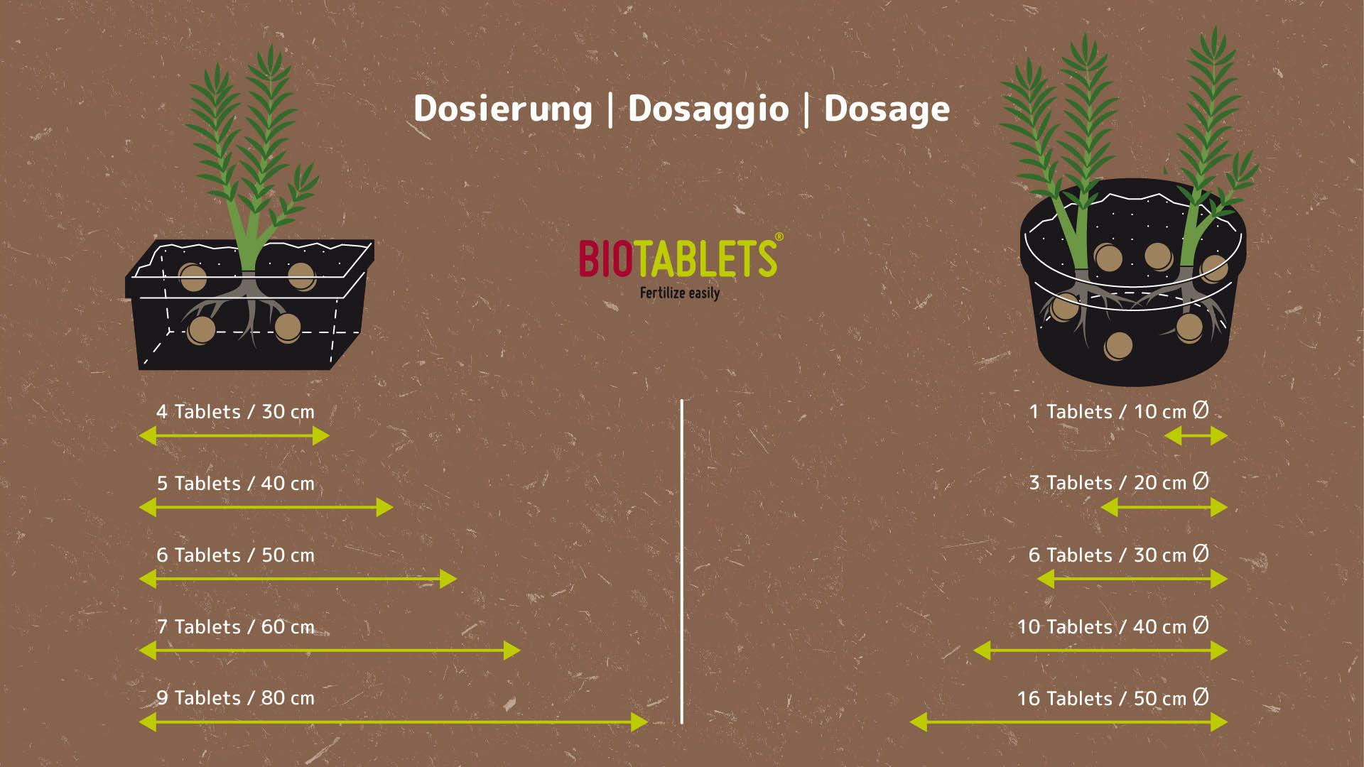 BIOTABLETS Factsheet
